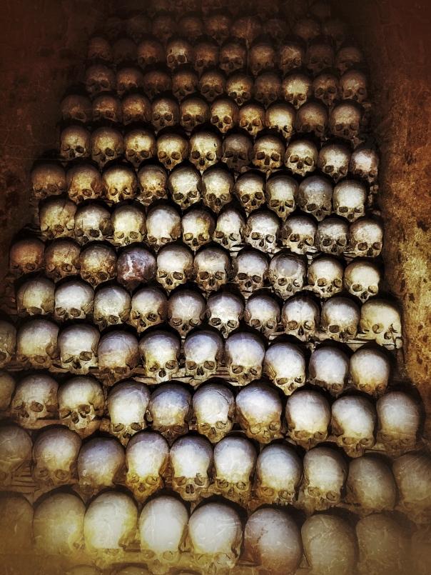 brno skulls
