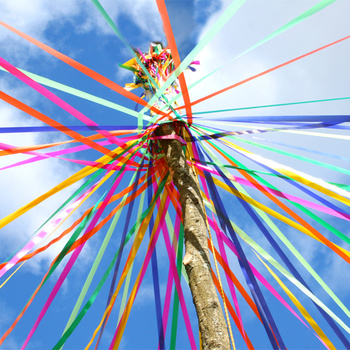 maypole_tree