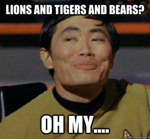 takei lions