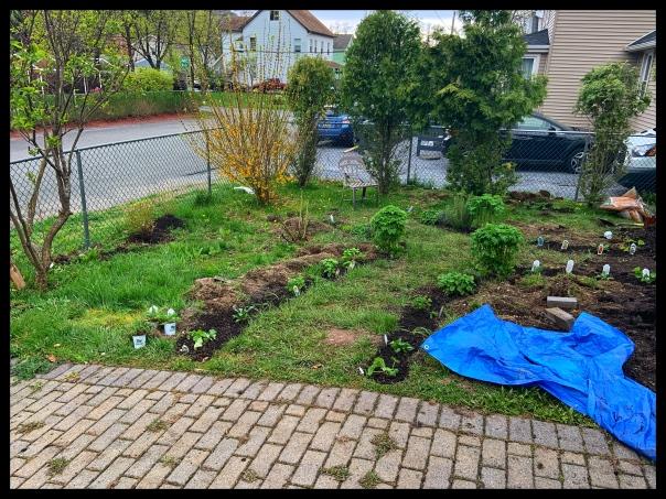 april 2020 herb garden