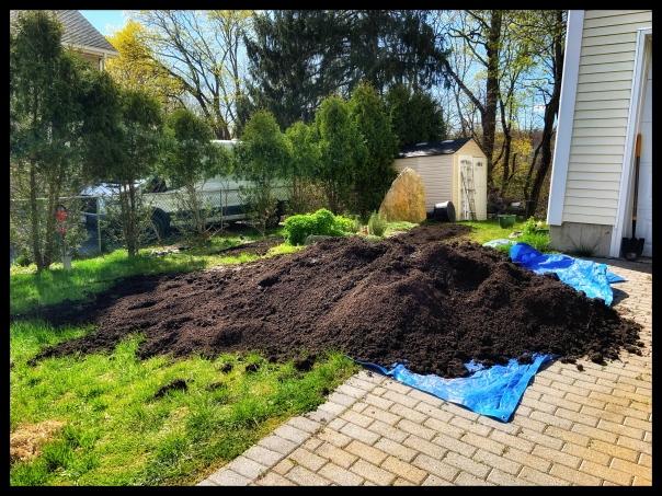 gardening adventures april 22