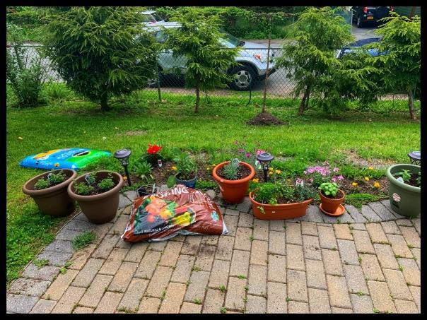 may 2020 flowerpots 2